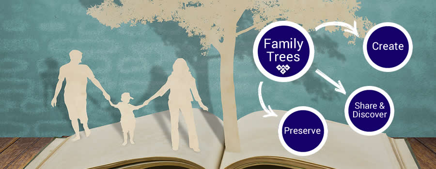 Family Trees Create Preserve Share Discover